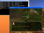 Calindor 0.4.0: Human_Ranger selling his vegetables...