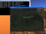 Calindor 0.4.0: Human_Ranger arrives in Lytton
