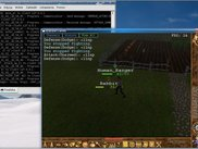 Calindor 0.4.0: Human_Ranger fighting evil bunnies