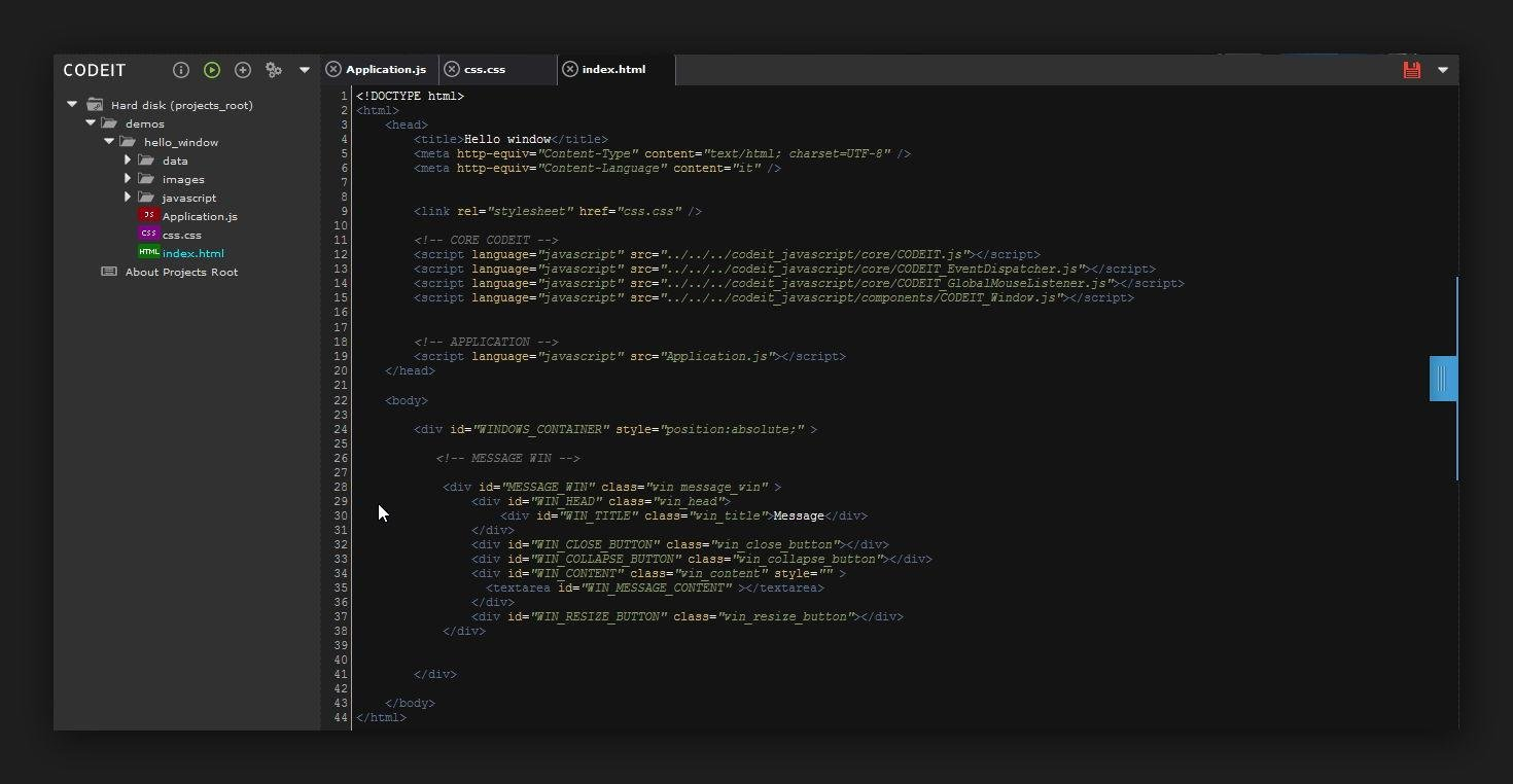 Codeit IDE screenshot