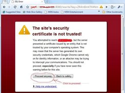 4.Paste the URL and enter, accept certificate to proceed