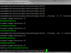 Copy and Move with checksum verification download