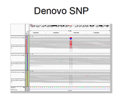 Denovo SNP in a trio called with DeNovoGear.