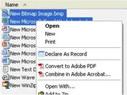 Context Menu in Windows Explorer