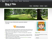 Blog with PixelGreen skin