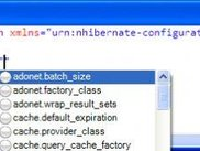Attribute value completion  ( using NHibernate schema )
