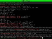 compile, install, test in Linux console