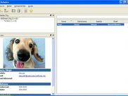 Main Window (winxp)