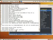 Terminal of fidoip after recv messages