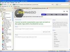 The connection page on the www.firewebsso.com public server