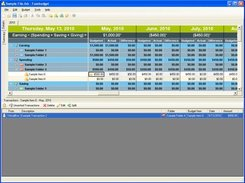 1. The main budget worksheet / transaction viewer