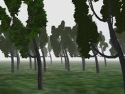 Second screenshot, trees tests