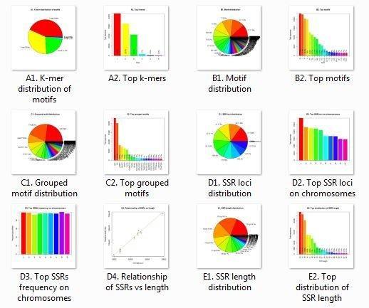 GMATA software for Genomic SSR marker download | SourceForge net