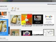 Picasa Feature