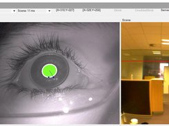 Haytham Gaze Tracker download | SourceForge net
