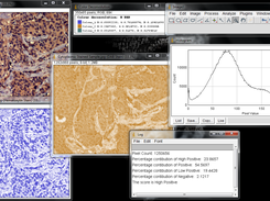 IHC Profiler download | SourceForge net