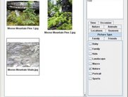 Image Tagger (Windows), showing Title, Caption, Keywords