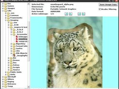 Image Browser Demo (VCL Application)