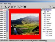 Basic screen for viewing and sorting images.