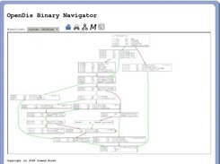 OpenDis Binary Navigator showing a basic blocks diagram