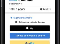 invoice2go paymentoptions