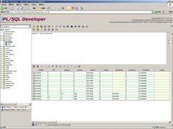 iPL/SQL Developer V1.1.1.1218_1