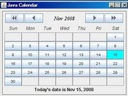 Calendar displaying only Today's Date