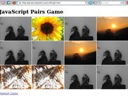 JavaScript Pairs Game running on Javascript Pairs Website