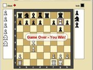 Screenshot of a game of chess