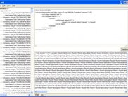 Xml XSLT Screen (second tab)