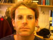 Illustration of the blink detection tool (eye open)