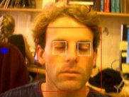 Illustration of the blink detection tool (eye closed)