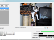 CommandCentral with a dragged .jpg of a cat - Golverd standard software