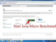 1)Start Java Micro Benchmark from http://opt.sourceforge.net