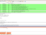 wireshark capture of sent sms messages to remote server (softthrifty.com  no longer active))