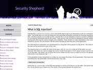 Detailed Security Risk Explanations