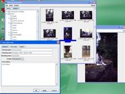 Photovault running in Windows XP
