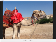 Camel Image Viewer