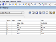 Record View Csv File