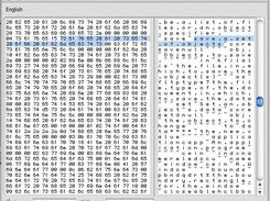 Hexadecimal editor window