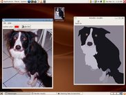 Rotoscoping my dog, Sam.