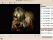 RoxBird  PreView(Preview Movies,Musics and Images while D/L)