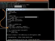 Windows client controlling a Linux server