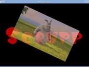 Scrupp supports rendering of MPEG-1 videos using OpenGL