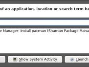 Shaman Runner: installing packages