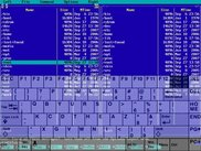 The keyboard over the mc, the keyboard is semitransparent.