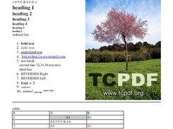Generic TCPDF screenshot