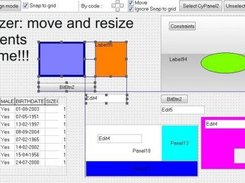 TcyResizer : move/resize controls at runtime.