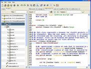Tloona IDE main window