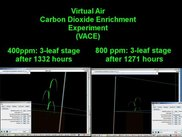 2) Virtual Air Carbon Dioxide Enrichment (VACE)